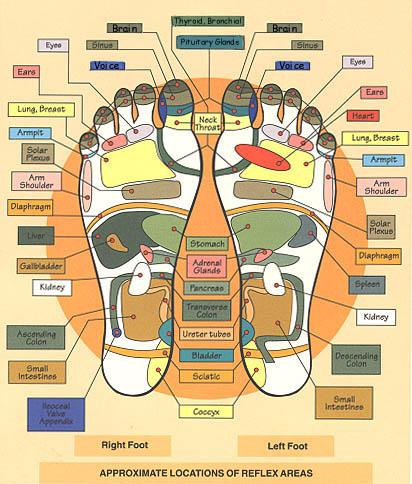 refleksiology